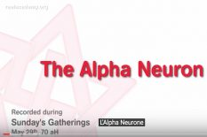 neurone alpha