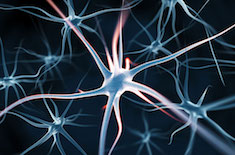 neurone artificiel