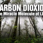 CO2 molécule miracle rael raelien elohim ambassade ovni extraterrestres