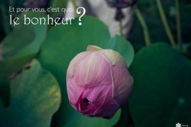 bonheur2b