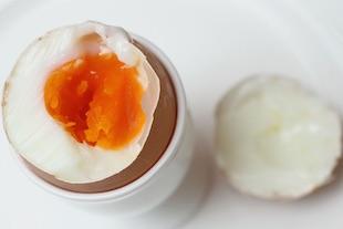 un œuf par jour