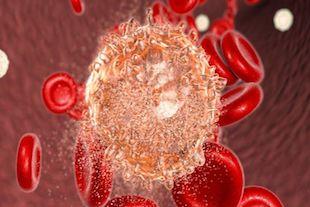 système immunitaire affaibli