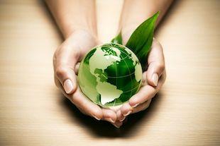 écologisme et réchauffement climatique