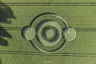 crop circles 2020 Crop1-copy