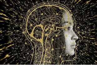capacités cognitives