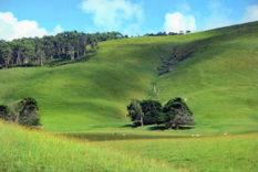 La Chine possèdes des millions d'hectares en Australie