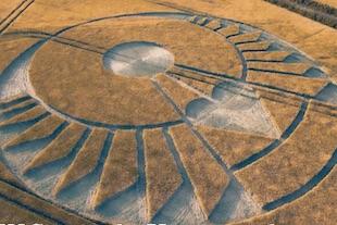 crop circles de 2020