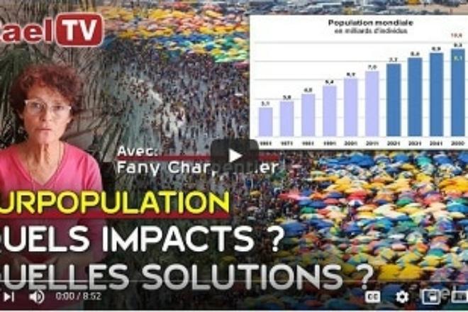 SURPOPULATION IMPACTS SOLUTIONS
