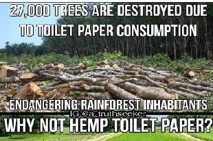 toilettes japonaises ou papier toilette ?
