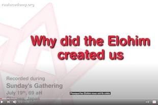 pourquoi les elohim nous ont créés?